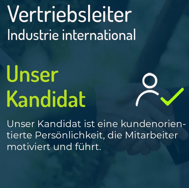 Vertriebsleiter Industrie